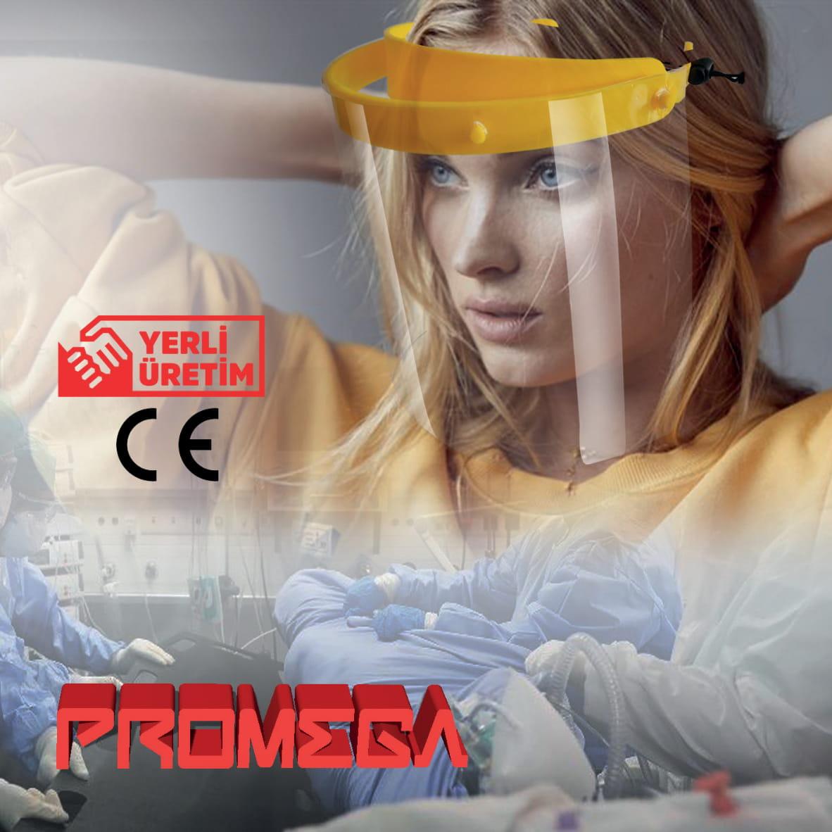 promega2 1(1)